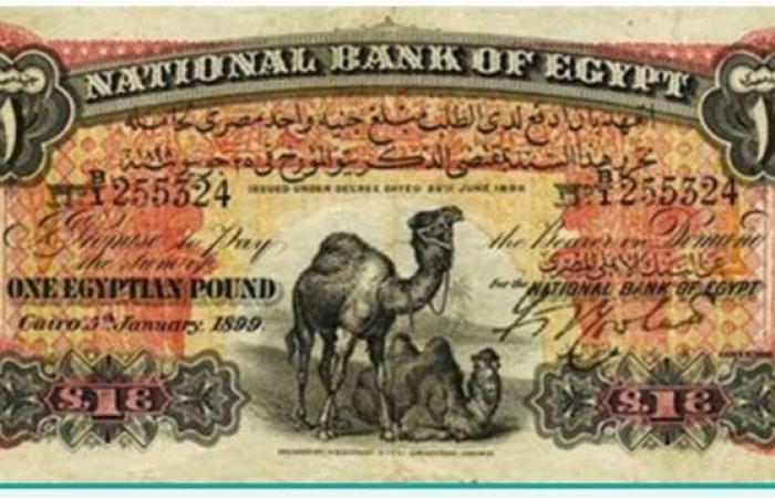 """ألوان الوطن   تسعير العملات القديمة 2021.. شروط بسيطة تضمن «ثروة كبيرة» """"بالبلدي"""""""